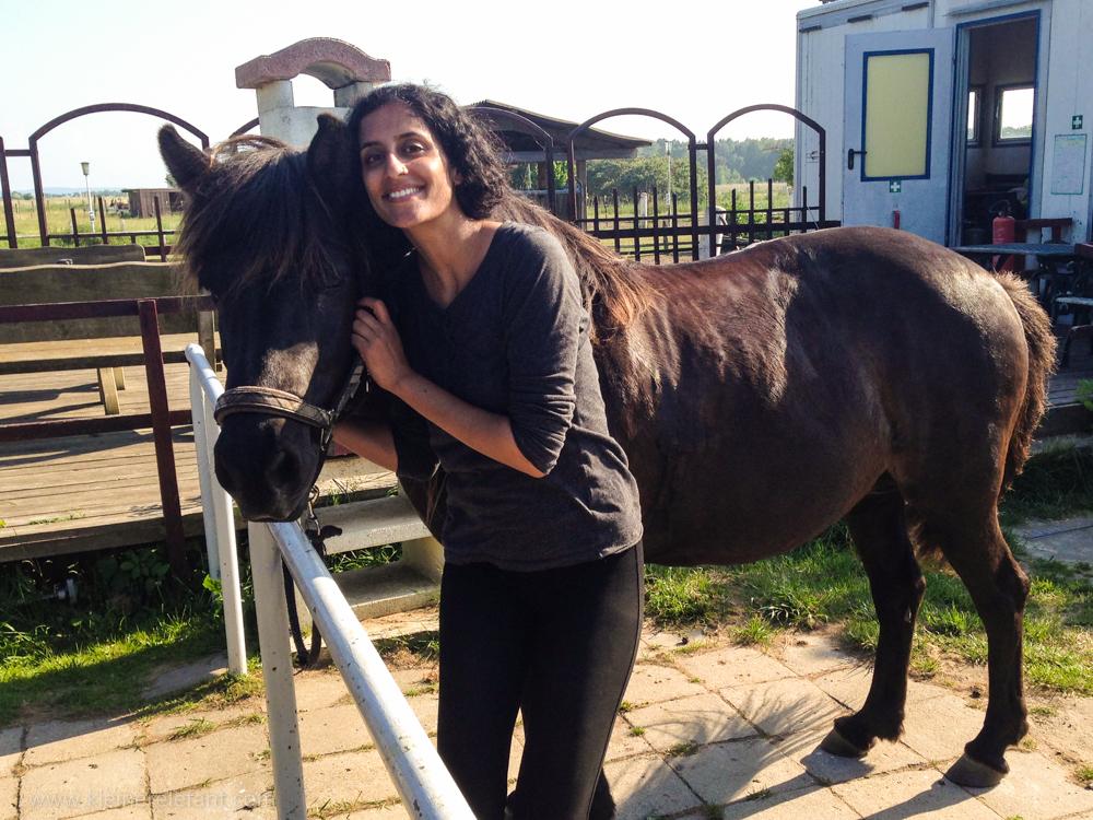 Shirani mit einem Islandpferd