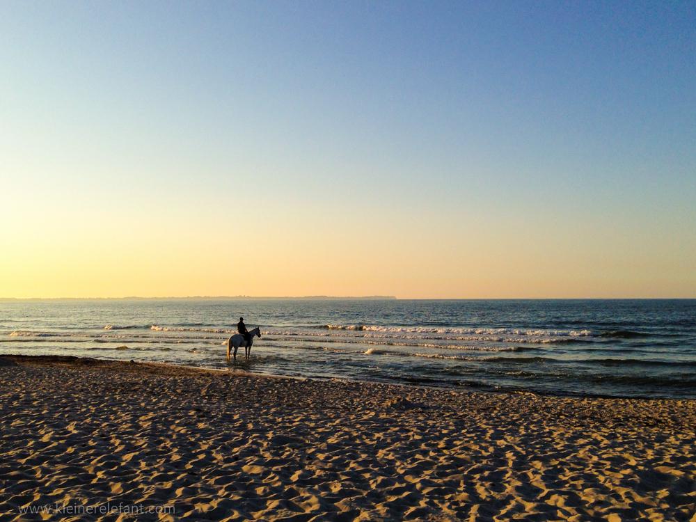 Ein Reiter am Strand auf Rügen