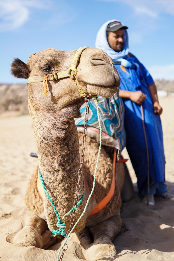 Mein Freund, das Kamel: Mimoun mit seinem Besitzer