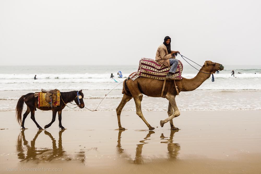 Ein Kamelreiter mit Pony am Strand von Taghazout.