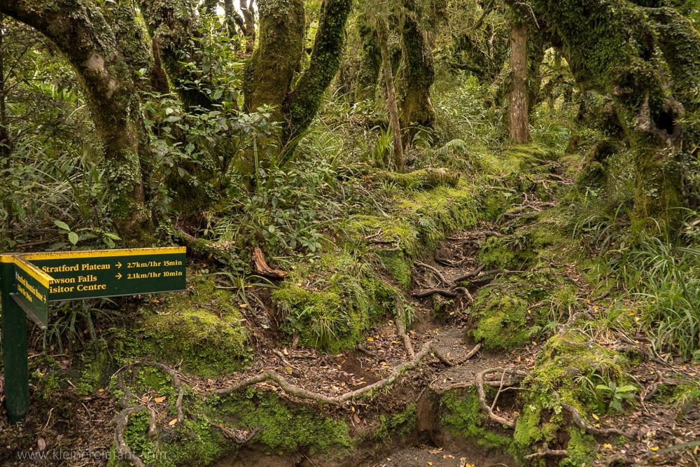 Wegweiser im Mount Egmont Nationalpark