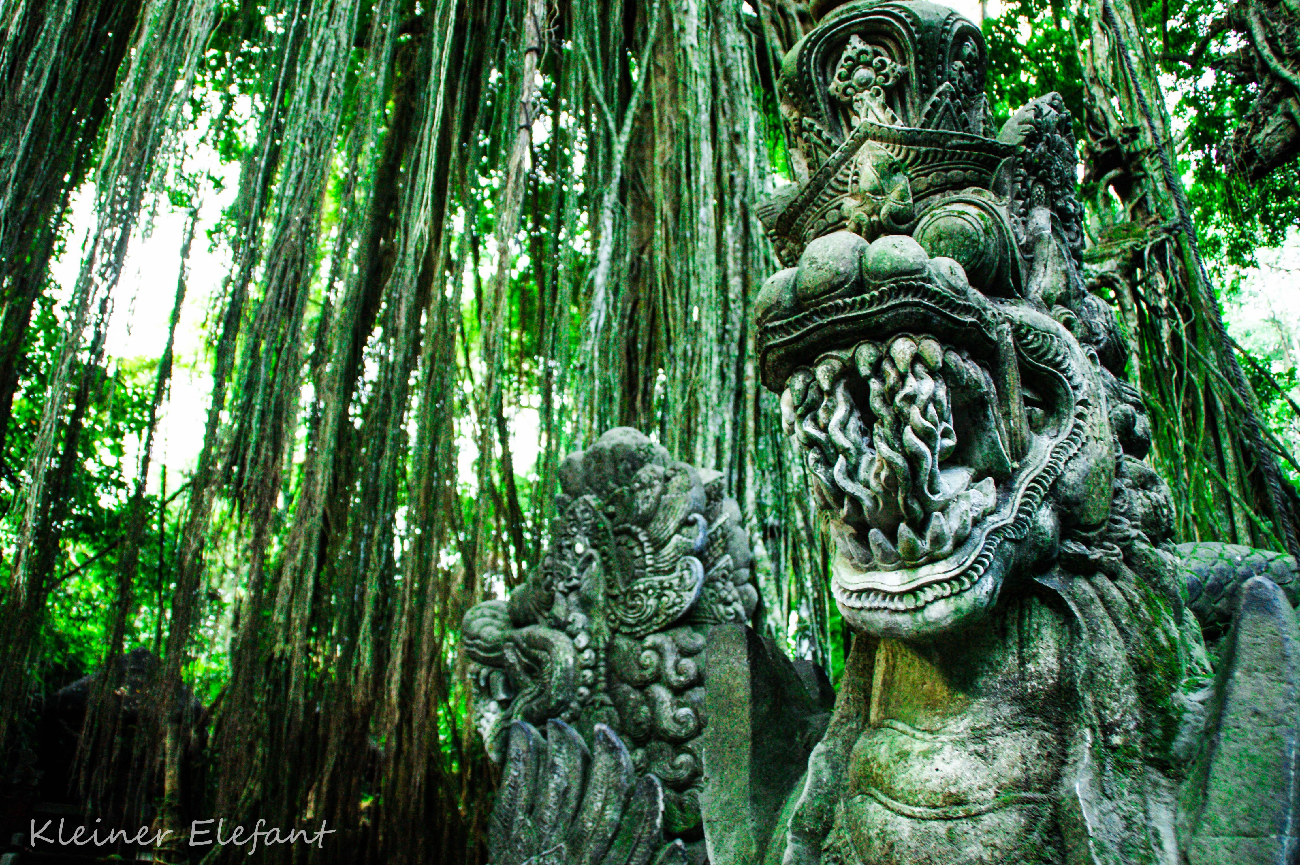 Brücke im Sacred Monkey Forest