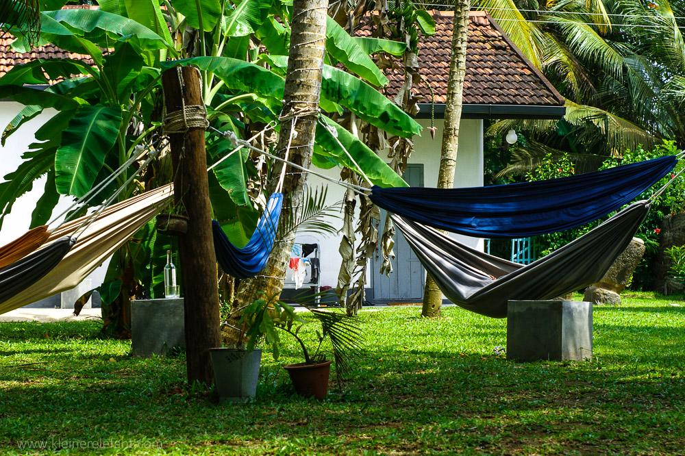 Hängematten in einem Garten in Sri Lanka