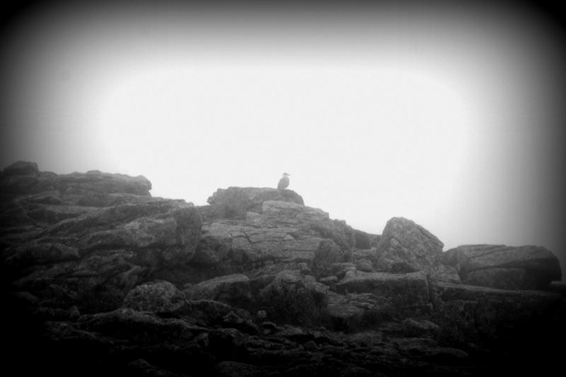 Pointe du Raz: Der Touristenmagnet.