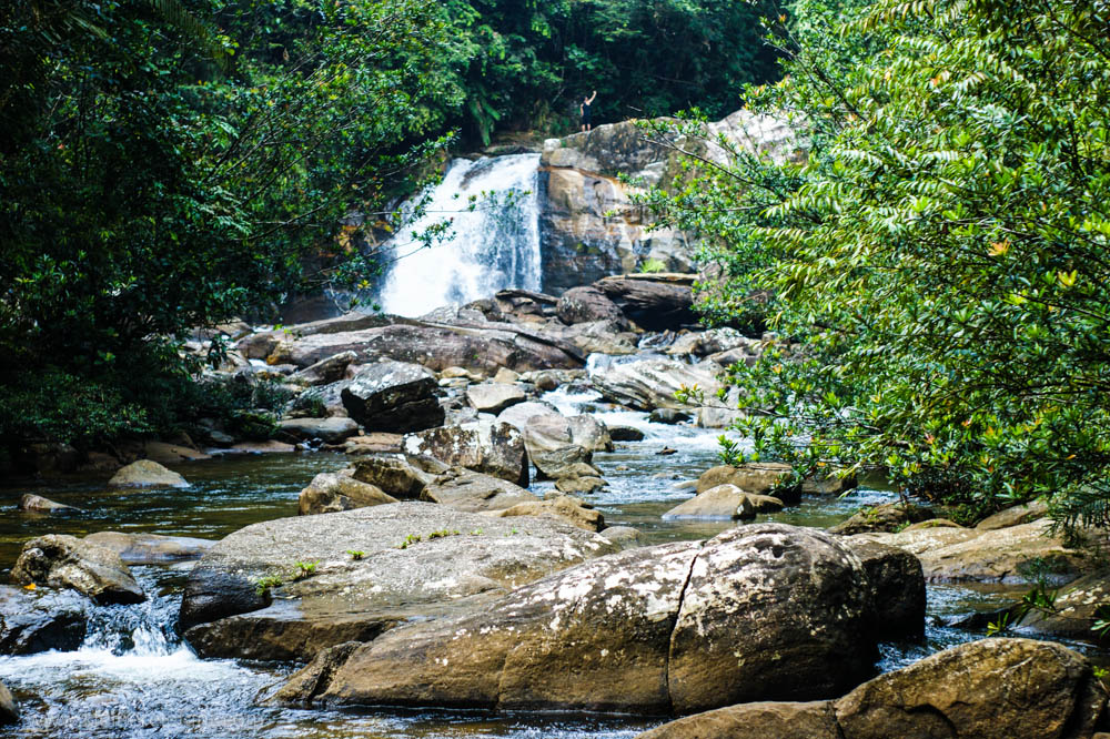 Fluss Sinharaja