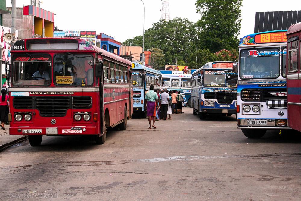 Busse in Sri Lanka